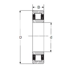 80 mm x 170 mm x 39 mm  SIGMA NU 316 cylindrical roller bearings