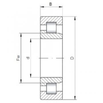 260 mm x 480 mm x 174 mm  ISO NJ3252 cylindrical roller bearings