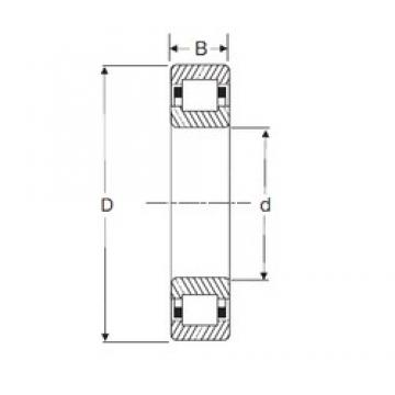 80 mm x 170 mm x 39 mm  SIGMA NUP 316 cylindrical roller bearings